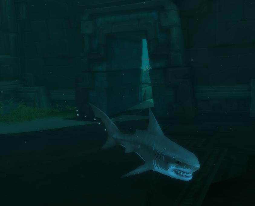 Ruinenhai