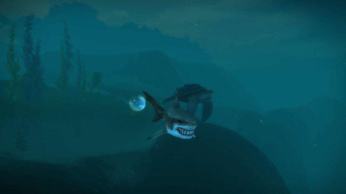 Mama Hai mit Baby Hai geschützt in der Blase besuchen die Schildkröte